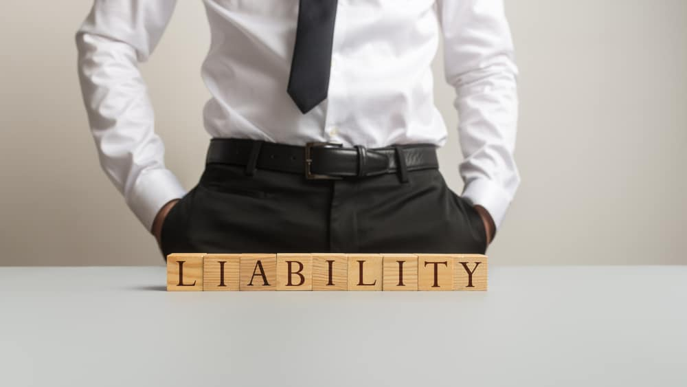 what is a limited liability company in business